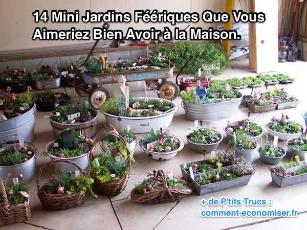 Best Mini Jardin Japonais Interieur Photos  Amazing Design Ideas