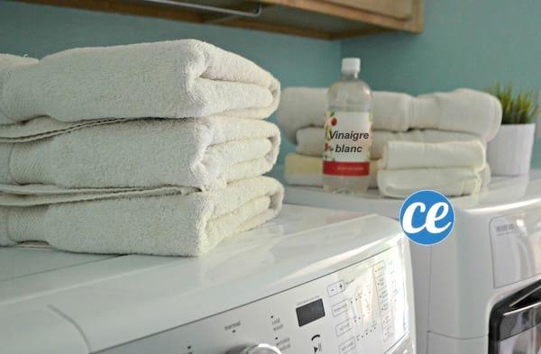 odeur moisissure cool comment enlever une tache de moisissure with odeur moisissure maison with. Black Bedroom Furniture Sets. Home Design Ideas