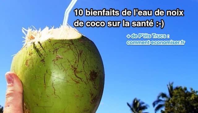 Noix de coco avec une paille pour boire l'eau de coco