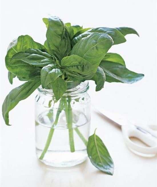 bocal en verre pour conserver ses herbes aromatiques