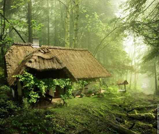maison magique et surprenante en pleine foret