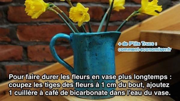 Faire durer les fleurs en vase plus longtemps avec du bicarbonate
