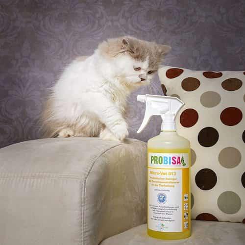 7 produits compl tement naturels pour nettoyer la liti re du chat. Black Bedroom Furniture Sets. Home Design Ideas
