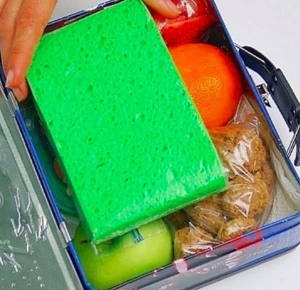 une éponge gelée pour rafraichir un gouter ou un pique nique