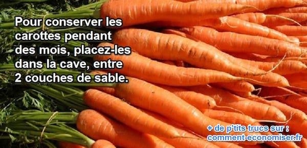conserver carottes cave