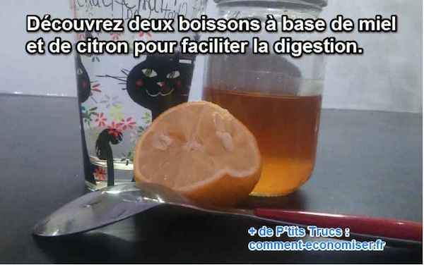 remede naturel pour digestion difficile