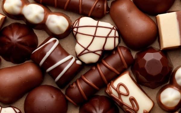 les chiens ne doivent pas manger de chocolat