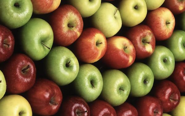 les chiens ne doivent pas manger de pommes