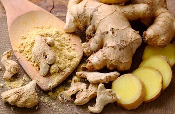 les chiens peuvent manger un petit peu de gingembre