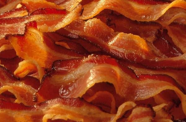 les chiens ne doivent pas manger de bacon
