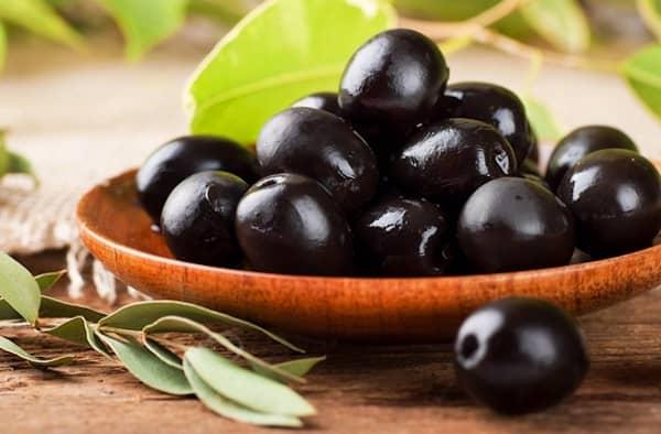 les chiens peuvent manger des olives