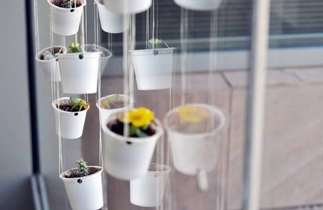 jardin suspendu dans capsule de café nespresso