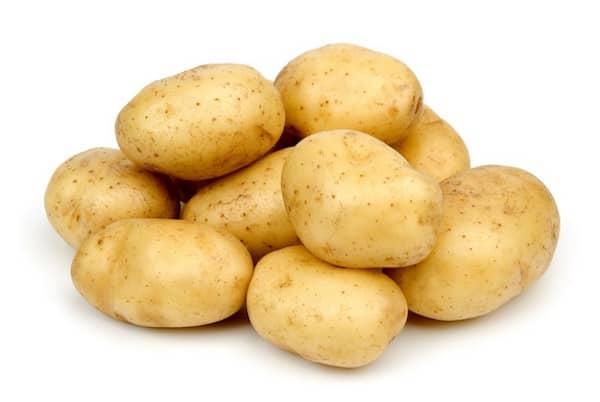 les chiens ne peuvent pas manger de pommes de terre crues