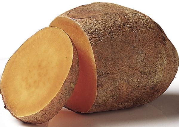 les chiens peuvent manger de la patate douce