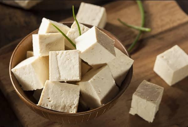 les chiens ne doivent pas manger de tofu