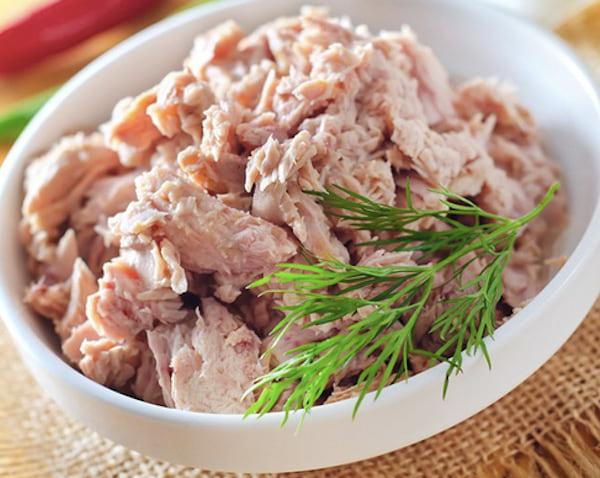 les chiens ne doivent pas manger du thon en boite