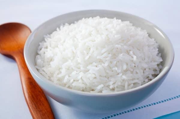 les chiens peuvent manger du riz blanc
