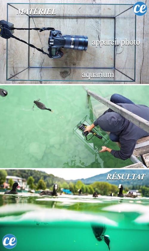 Utilisez un aquarium our prendre des clichés sous l'eau.
