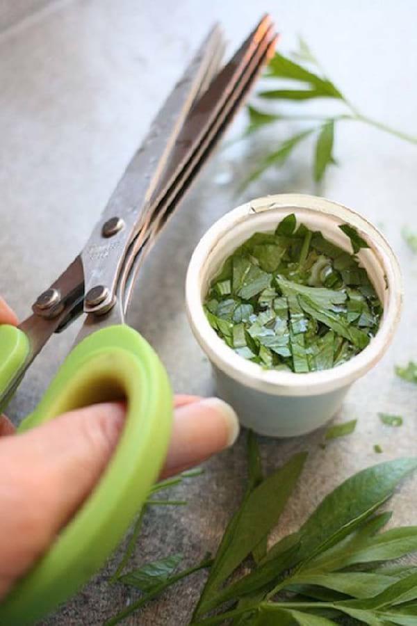 capsule nespresso recyclée pour conserver fines herbes