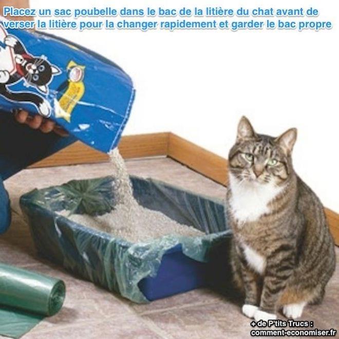 l 39 astuce la plus rapide pour changer la liti re de votre chat. Black Bedroom Furniture Sets. Home Design Ideas