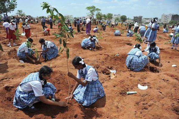 Des écoliers en Inde qui plantent des arbres dans le sol rouge