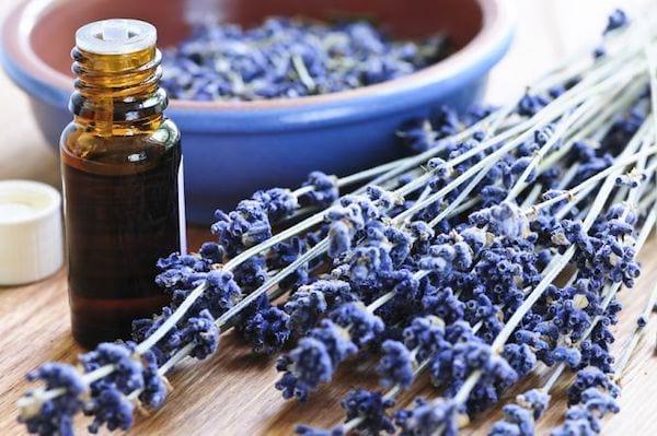 Utilisations huile essentielle  lavande