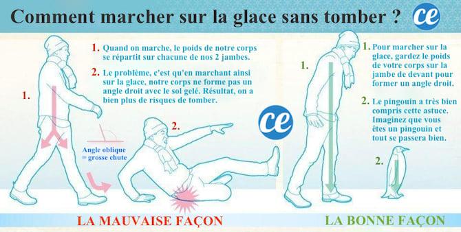 pour ne pas tomber en marchant sur la glace, il faut faire comme les pingouins