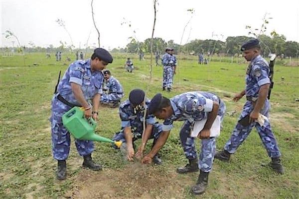 Militaires en inde qui plantent des arbres dans la terre