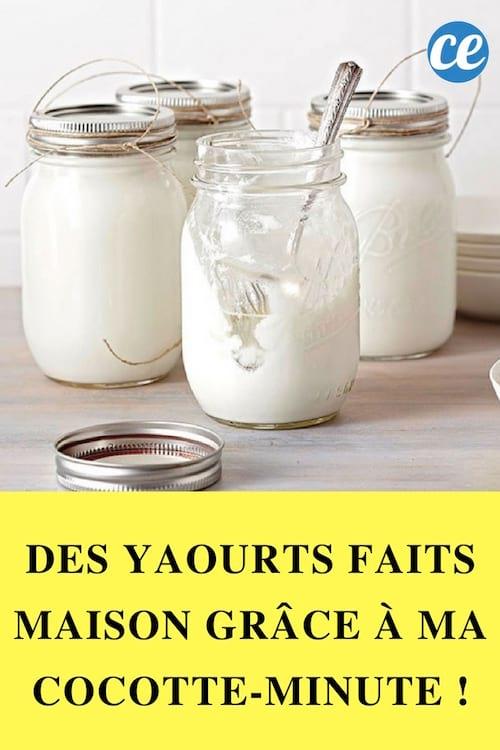 Des Yaourts Faits Maison Grace A Ma Cocotte Minute