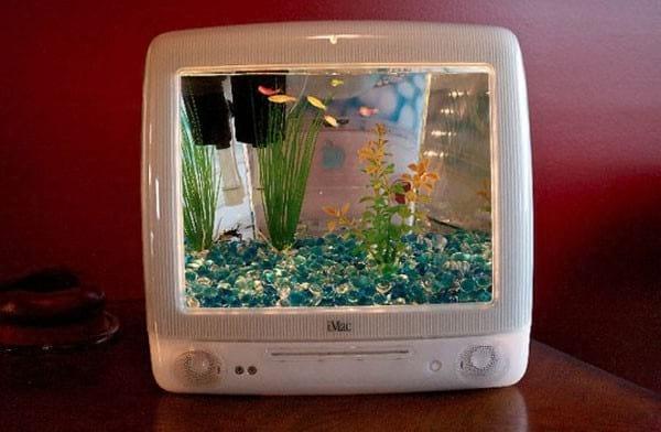 un écran télé devient un aquarium