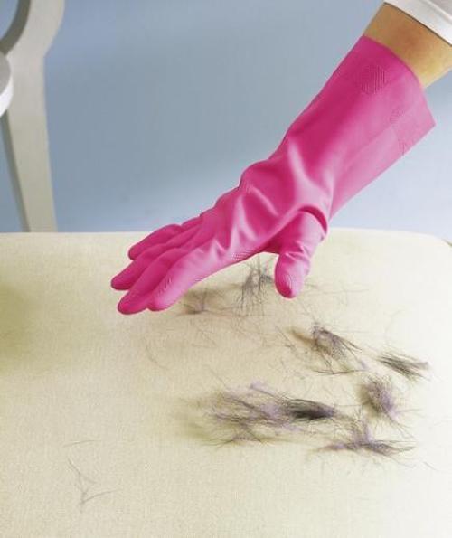 comment enlever les poils d'animaux sur le canapé