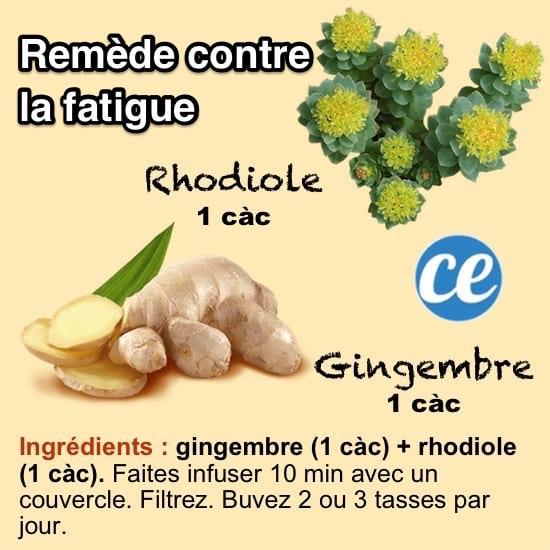 La recette d'un remède de grand-mère pour lutter contre la fatigue avec des infusions de plantes