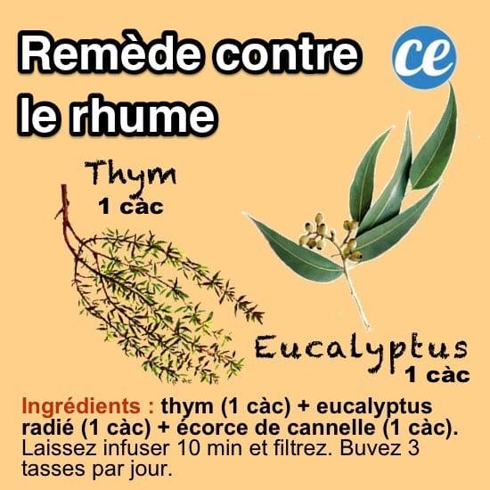 recette d'un remède de grand-mère pour soigner le rhume avec une infusion aux plantes