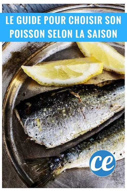 le calendrier pour payer moins cher poissons et fruits de mer selon la saison. Black Bedroom Furniture Sets. Home Design Ideas