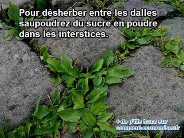 Astuce Pour Nettoyer Dalles Terrasse. Best Nettoyant Terrasse With ...