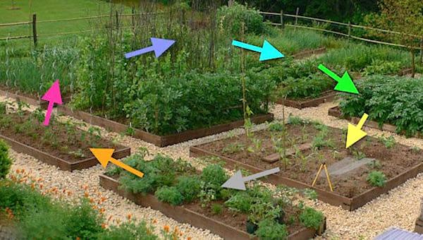 pratiquer la rotation des cultures pour ne pas épuiser les sols