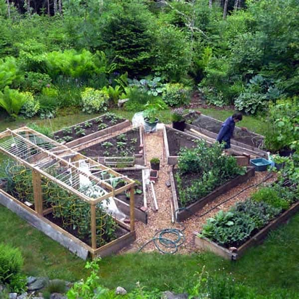 potager organise en triangle