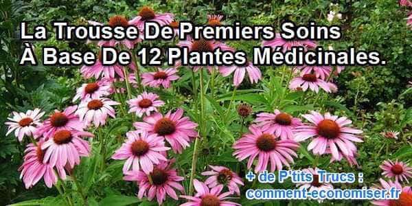 La trousse de premiers soins base de 12 plantes m dicinales - Liste des plantes medicinales ...