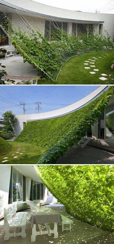 16 Idées Magnifiques Pour Faire de l\'Ombre Sur Votre Terrasse ...