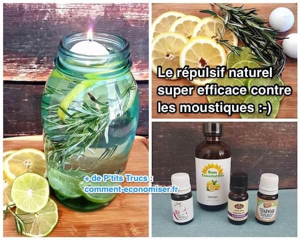 Remède de grand-mère efficace contre les moustiques