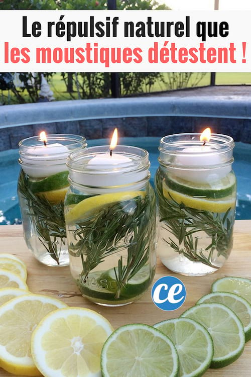 La recette de bougies anti-insectes parfumées aux huiles essentielles.
