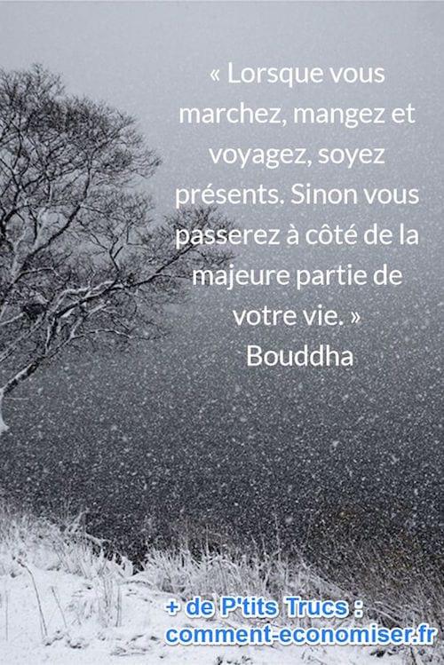 citation de Bouddha sur le fait d'être présent à ce qu'on fait