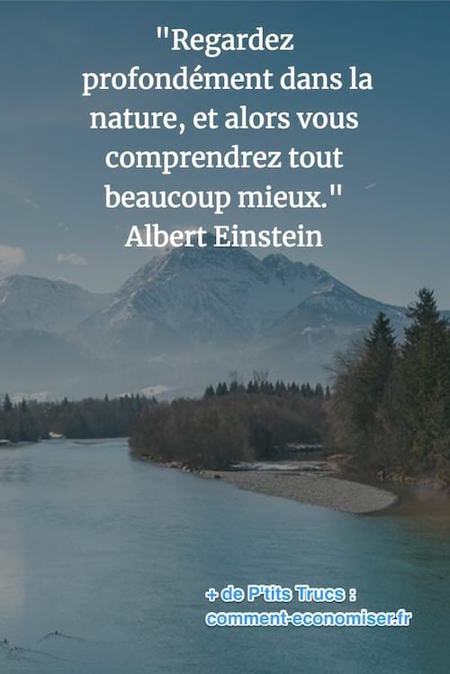 citation de Albert Einstein sur la nature