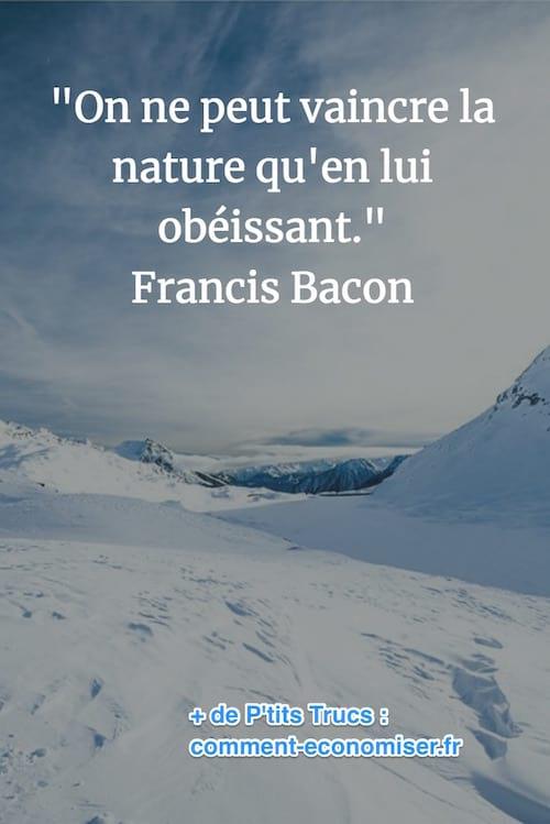 citation de Francis Bacon sur la puissance de la nature