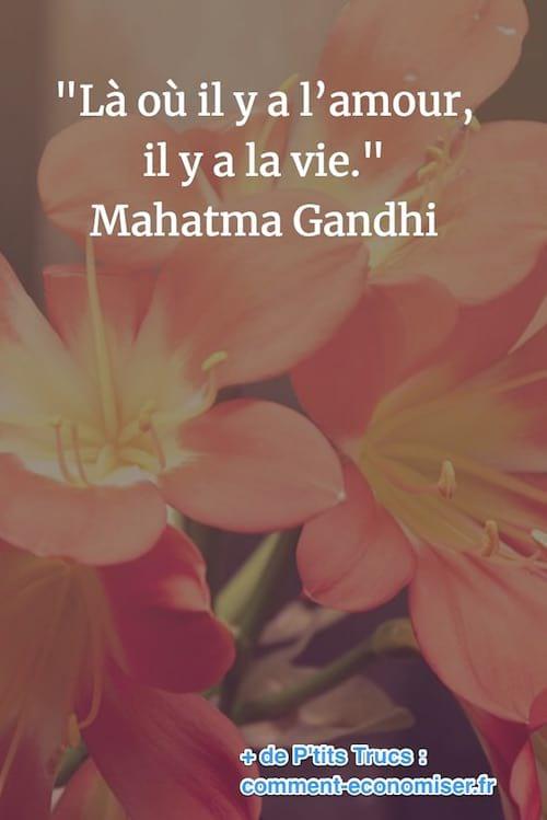 citation de gandhi sur la vie et l'amour