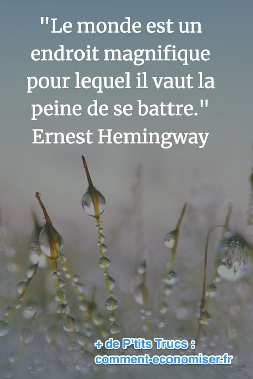 citation de Ernest Hemingway sur la beauté du monde