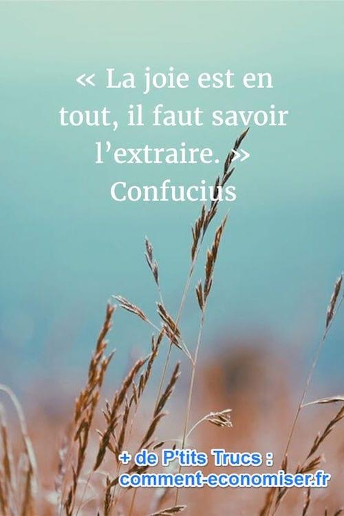 citation sur la joie de confucius