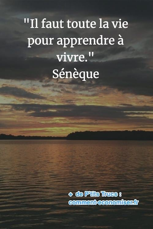 citation de Sénèque sur l'apprentissage de la vie