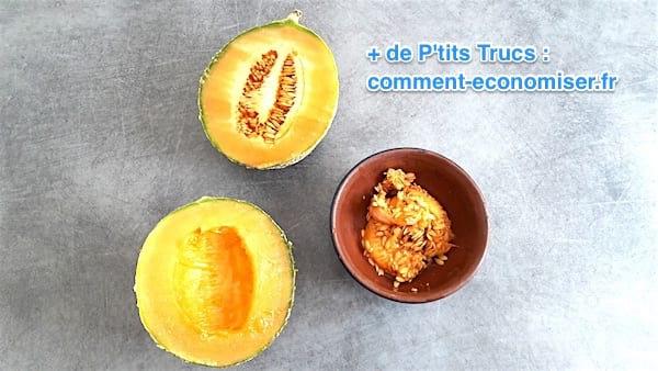 les graines de melon de melon sont enlevées et conservées