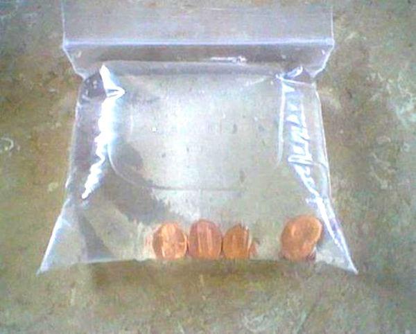 Un sac avec zip rempli d'eau et de quelques pièces jaunes.